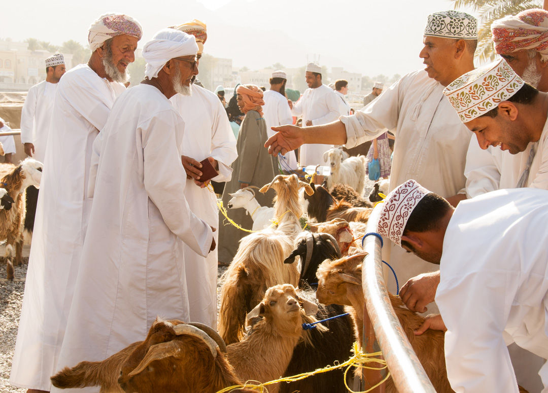 s oman elitetraveltourism nizwa friday animalcattlemarket3